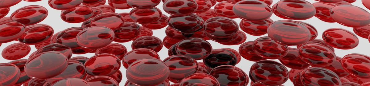 UD56 ~  le site sur le sang